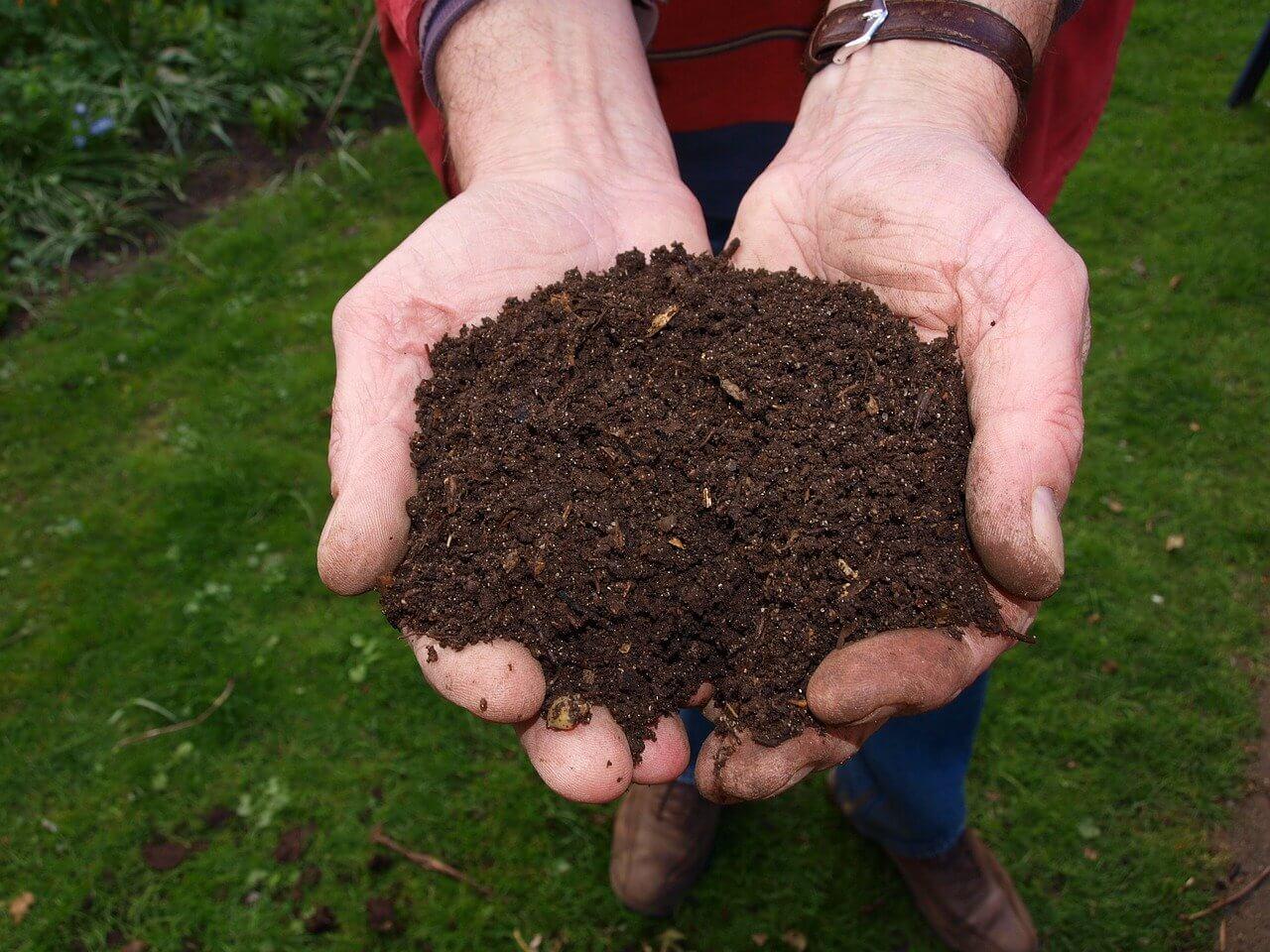 Was sollte unbedingt in den Komposter